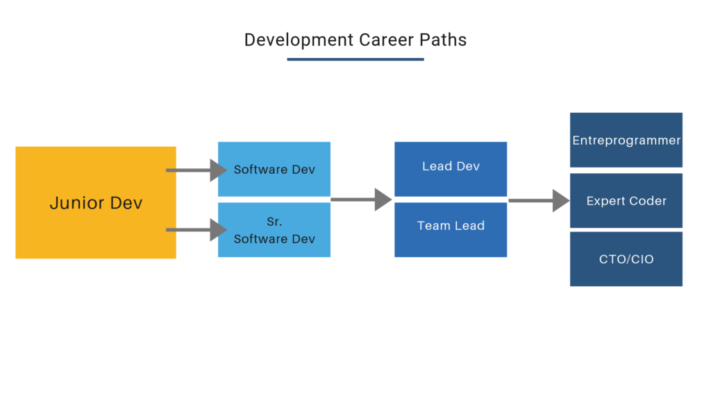 Diagram that shows how a typical developer's career may progress over time.